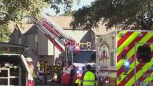 Voraz incendio provoca la muerte de una mujer y su mascota al noreste de San Antonio