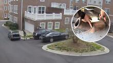 Video capta a ladrón robando un convertidor catalítico en menos de 2 minutos