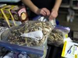 """Denver vota """"no"""" a la despenalización del consumo de hongos alucinógenos"""