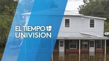 Paso a paso: Aprende a reparar daños leves en tu casa tras el paso de una tormenta