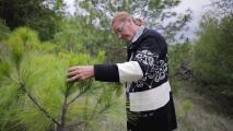 Esta abuela mexicana ha plantado más de un millón de árboles en su lucha contra el cambio climático