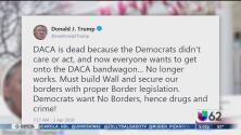 Activistas reaccionan a comentarios de Trump hacia dreamers y caravanas de inmigrantes