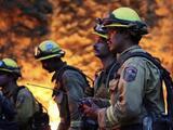 Avance del incendio French continúa causando estragos en el condado de Kern