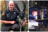 El perro policía Riggs atrapó al sospechoso de 2 asesinatos en Logan Square: el hombre le disparó