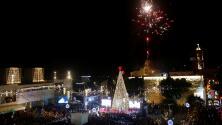 Encienden las luces del árbol de Navidad gigante en Belén, cuna del cristianismo