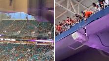 Fanáticos usan bandera de Estados Unidos para salvar a un gato que cae al vacío en pleno estadio