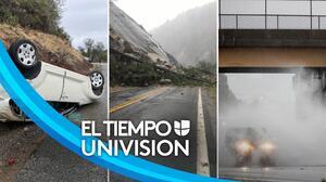 Lluvias históricas han dejado inundaciones y caída de árboles en el Área de la Bahía