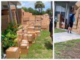 Recibió decenas de cajas de Amazon en el patio de su casa en Florida pero nadie sabe de quién son
