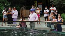 Avanzando hacia la reapertura total: Nueva York y Nueva Jersey hacen cambios en sus restricciones por la pandemia
