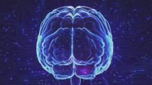 ¿Qué son los neuroderechos y por qué están relacionados con la inteligencia artificial?