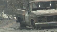 ¿Cómo aplicar a la ayuda de FEMA por desastres como  incendios forestales?