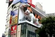 Un gato gigante se apodera de Tokio (no es real, pero lo parece gracias a la tecnología)