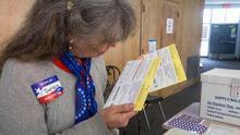 Aprueban solicitar la boleta electoral en línea para votar en ausencia en Georgia