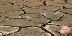 Comunidad del Valle Central se queda sin agua en medio de la creciente sequía