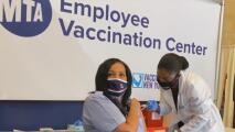 No cesan los esfuerzos contra el coronavirus en Nueva York: conoce las recientes medidas anunciadas