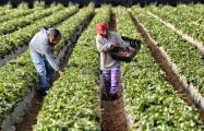 Gobernador Newsom promulga ley que garantiza mascarillas N95 para trabajadores al aire libre en California