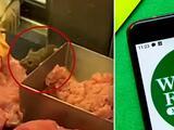 Whole Foods responde al video del ratón que come carne dentro de una vitrina en tienda de Manhattan