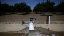 El robo de agua, un problema adicional a la histórica sequía que padece California