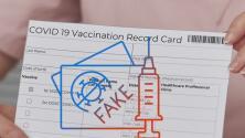 ¿Cómo verificar la autenticidad de las tarjetas de vacunación contra el coronavirus? Expertos responden