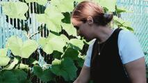 Cultivando plantas: los consejos de esta experta para hacer de tu hogar un espacio más verde