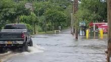 Inundaciones, cortes de electricidad y árboles caídos: los estragos de la tormenta Elsa en Long Island