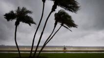 Tampa permanece bajo estado de emergencia y se prepara para el paso de Elsa