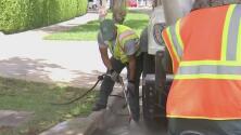 Miami adelanta jornadas de limpieza en alcantarillas para evitar inundaciones en las calles