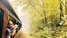 Estos son los paseos en tren que no te puedes perder en Carolina del Norte durante el otoño