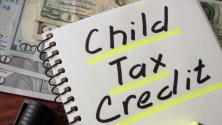 Actualización en plataforma del IRS garantiza que no pierdas el crédito por hijo