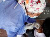 Arizona está lista para implementar la vacuna covid-19 para 600,000 niños