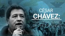 Nuestros Héroes: César Chávez, el líder campesino que transformó la lucha de los trabajadores hispanos en EEUU