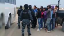 Rescatan a decenas de niños jornaleros en México