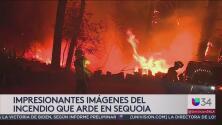 Un incendio de grandes proporciones arde en Sequoia.