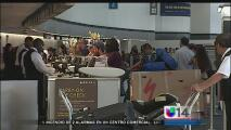 Viajeros opinan sobre la presencia del virus del Zika en Florida