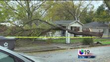 ¿Qué hacer en caso de emergencia durante la tormenta?