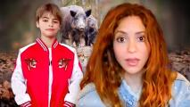 Shakira fue atacada por un par de jabalíes y la reacción de su hijo Milán es inaudita