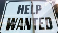 ¿Buscas empleo en Houston? Estas son las industrias que ofrecen un mayor tipo de posibilidades laborales