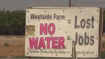 Campos agrícolas anticipan pérdidas laborales y de cultivos debido al corte de agua en el condado de Fresno