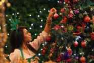 Cuenta regresiva para Navidad: árboles navideños costarían un 20% más este 2021