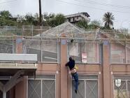Transmisión en vivo capta el momento en que inmigrantes saltan el muro fronterizo