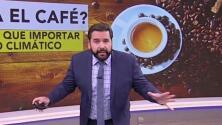 ¿Te gusta el café? El cambio climático podría hacer que esta bebida tenga los días contados