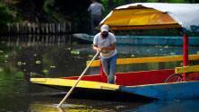 Pobladores y autoridades en México unen esfuerzos para preservar los canales fluviales de Xochimilco
