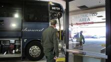Greyhound no está obligada a permitir redadas migratorias en sus autobuses, según un documento