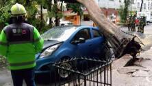 México: Intensas lluvias provocan inundaciones y cortes de energía eléctrica