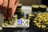 El cannabis podría salir de la lista de sustancias controladas por el gobierno federal