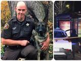 """Mejora Riggs, el perro """"héroe"""" que recibió un balazo al detener al sospechoso de dos asesinatos en Logan Square"""