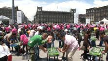 México impone un nuevo récord Guinness de más personas jugando futbolito simultáneamente