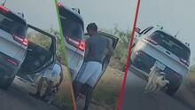 """""""Una persona fría, irresponsable"""": Indignante video muestra a hispano abandonando a su perro en plena carretera"""