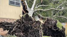 ¿Qué hace la gente tras un huracán se queda o se va?
