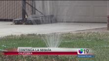 Nuevas regulaciones para preservar el agua